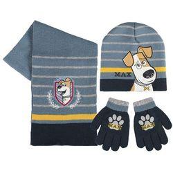 Czapka, szalik i rękawiczki sekretne życie zwierzaków domowych max marki Cerda