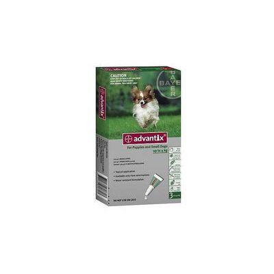 Pielęgnacja psów Bayer FERA.PL