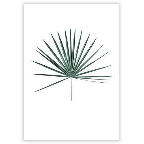 Plakat Tropical Leaf Emerald Green 21 X 30 Cm Ramka Bez Ramki Dekoria
