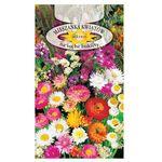 Roltico Mieszanka kwiatów na suche bukiety 1g (5906493005667)