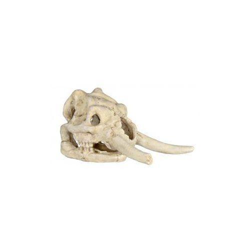Trixie zestaw czaszek - 8 - 11 cm/ sztuk