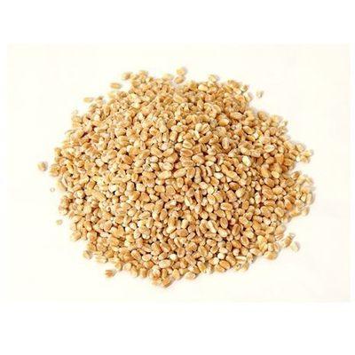 Kasze, makarony, ryże HORECA - surowce biogo.pl - tylko natura