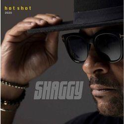 Muzyka alternatywna  Shaggy InBook.pl