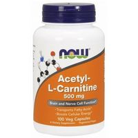 Kapsułki ALC (Acetyl-L-Karnityny) 500mg 100 kaps.