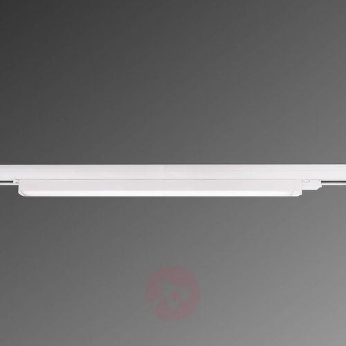 3 Fazowy Reflektor Szynowy Linear 100 Led Deko Light