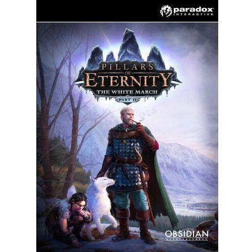 Pillars of Eternity - Hero Edition - wersja cyfrowa