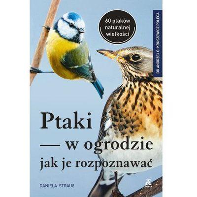 Hobby i poradniki Straus Daniela InBook.pl