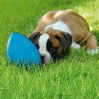 Zooplus Runningegg zabawka dla psa - kolor niebieski| -5% rabat dla nowych klientów| darmowa dostawa od 99 zł