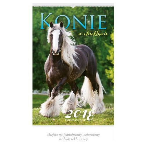 Kalendarz wieloplanszowy konie w obiektywie rw29 marki Lucrum
