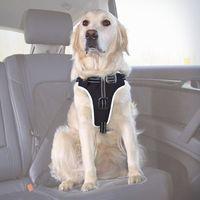 szelki bezpieczeństwa do samochodu dla psa - różne rozmiary marki Trixie
