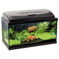 Aqua szut 60cm aqua4start akwarium proste zestaw akwarystyczny
