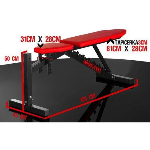 Kelton  tryton hl1 - produkt w magazynie - szybka wysyłka! (5906874215005)