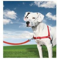 Szelki dla psa easywalk marki Easy walk