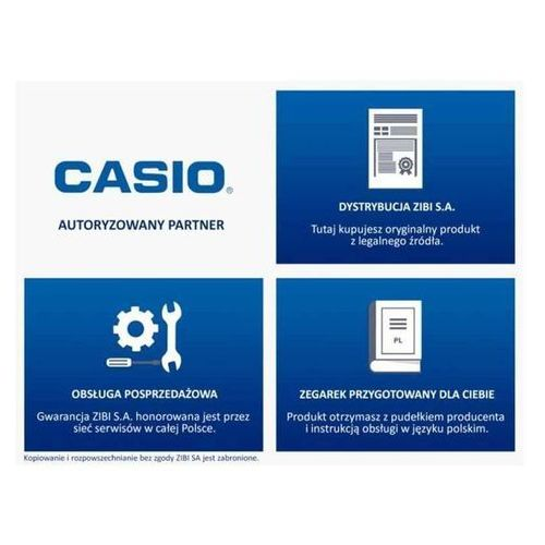Casio BGS-100-4AER