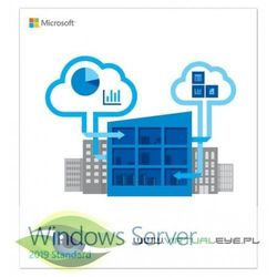 Programy serwerowe  Microsoft VirtualEYE