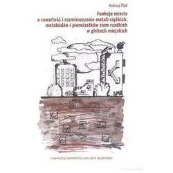 Architektura  UMCS InBook.pl