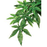 Exo terra roślina sztuczna – silk abuliton rozmiar s