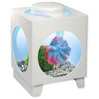Tetra akwarium set betta projector białe 1,8l