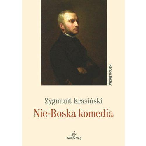 Nie-Boska komedia Kanon lektur Zygmunt Krasiński, oprawa miękka