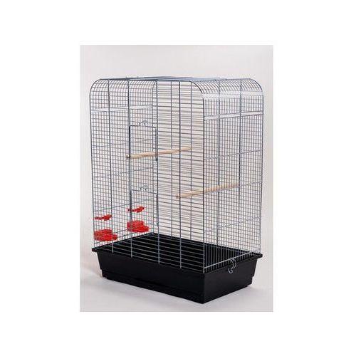 Inter-zoo nina p065 klatka chrom z grzędą dla ptaków 54x38x75 cm marki Inter zoo