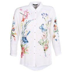 Koszule damskie  Desigual Spartoo