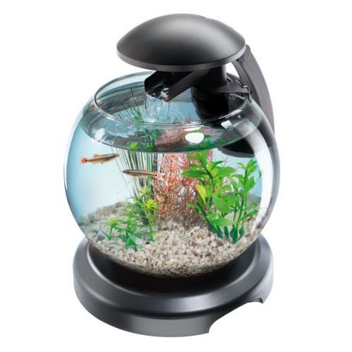 cascade globe black - szklana kula z filtrem czarna 6,8l marki Tetra