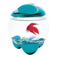 Tetra Akwarium  betta bubble 1,8l niebieskie/szklane/plastik