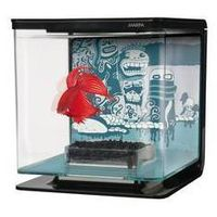 Akwarium betta marina kit wild things 2l plastik marki Hagen