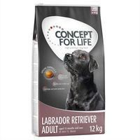 Concept for Life Labrador Retriever Adult - 2 x 12 kg | Dostawa GRATIS!