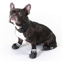Zooplus exclusive Buty dla psa s & p boots - rozm. l| -5% rabat dla nowych klientów| darmowa dostawa od 99 zł (4054651521526)