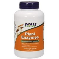 Kapsułki Plant Enzymes 240 kaps.