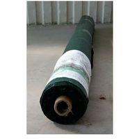 Agrokarinex Agrotkanina zielona 100 g/m2, 1,6 x 100 mb. rolka
