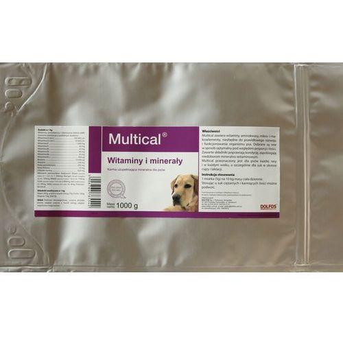 Proszek Dolvit Multical DOG proszek 1kg