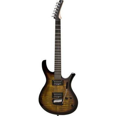 Gitary elektryczne Parker muzyczny.pl