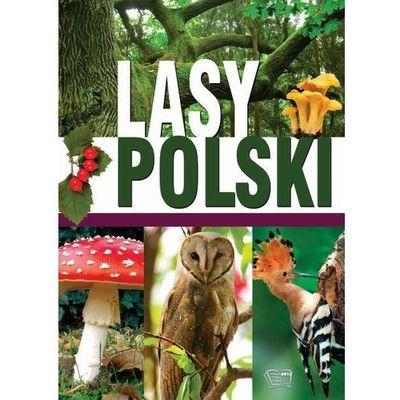 Przyroda (flora i fauna) Arti InBook.pl