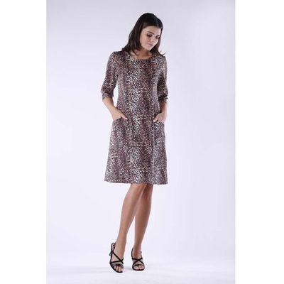 9577cb1c58d2b8 Suknie i sukienki Nommo, Wzór: zwierzęcy, Rozmiar: 38 ceny, opinie ...