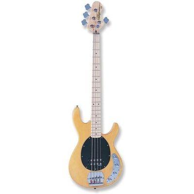 Gitary basowe Vintage muzyczny.pl