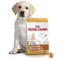 labrador retriever junior - 12kg + promocja 4+1 gratis!!! marki Royal canin