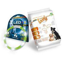 HILTON LED obroża silikonowa 1,4x0,8x55CM z usb dla psa - zielona + GRATIS HILTON CHUSTECZKI NAWILŻAJĄCE DLA PSA