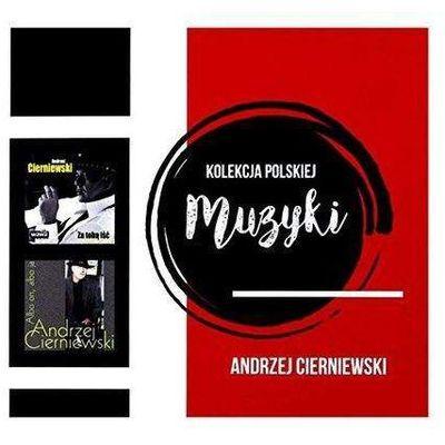 Pop UNIVERSAL MUSIC InBook.pl