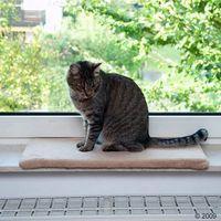Legowisko dla kota na parapet plush, beżowe - dł. x szer. x wys.: 60 x 26 x 2 cm| darmowa dostawa od 89 zł + promocje od zooplus!| -5% rabat dla nowych klientów marki Zooplus exclusive