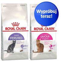 Royal canin Mieszany zestaw próbny , 2 x 2 kg - kitten + kitten sterilised
