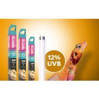 Świetlówka UVB T5 Desert 12% HIGH OUTPUT ARCADIA