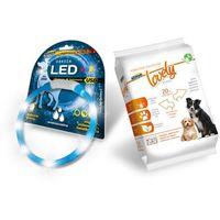 HILTON LED obroża silikonowa 1,4x0,8x55CM z usb dla psa - niebieska + GRATIS HILTON CHUSTECZKI NAWILŻAJĄCE DLA PSA