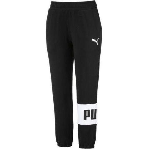 4f48e42622e90 Spodnie urban sports sweat pants (Puma) - sklep SkladBlawatny.pl