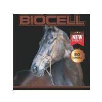PROBIOTYKI WSPIERAJĄCE PRAWIDŁOWĄ PRACĘ UKŁADU POKARMOWEGO Biocell probiotyk 1 kg