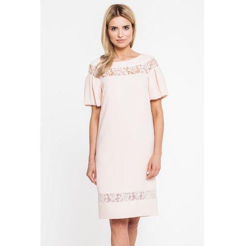 Paola collection Morelowa sukienka z koronkowymi wstawkami