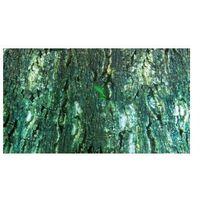 TRIXIE Tło do terrarium dwustronne tropic / bark - DARMOWA DOSTAWA OD 95 ZŁ! (4011905763217)