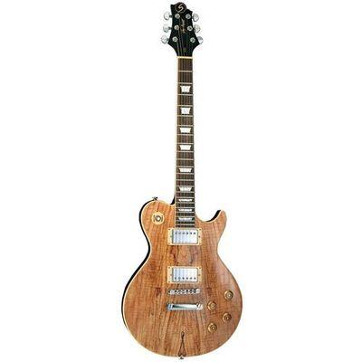 Gitary elektryczne Samick Guitars muzyczny.pl