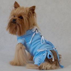 Ubranka dla psów  Grande Finale AnimalCity.pl
